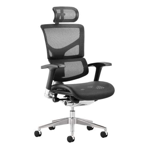 Ergo-Dynamic Posture Chair Black Mesh Black Frame With Arms With Headrest