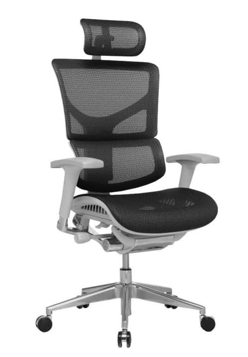 Ergo-Dynamic Posture Chair Black Mesh Grey Frame With Arms With Headrest