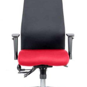 Onyx Bespoke Colour Seat With Headrest Bergamot Cherry