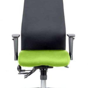 Onyx Bespoke Colour Seat With Headrest Myrhh Green