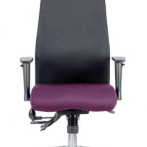 Onyx Bespoke Colour Seat With Headrest Tansy Purple